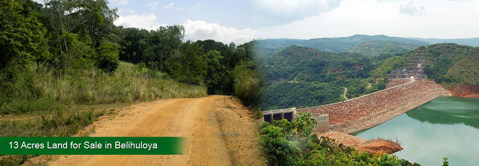 13 Acers Land for Sale situated close to Rathanapura – Badulla main road, land situated boundry or Uva and Sabaragamuwa. Teak tree, Milla tree, ideal for Eco tourism project or business related tourism.