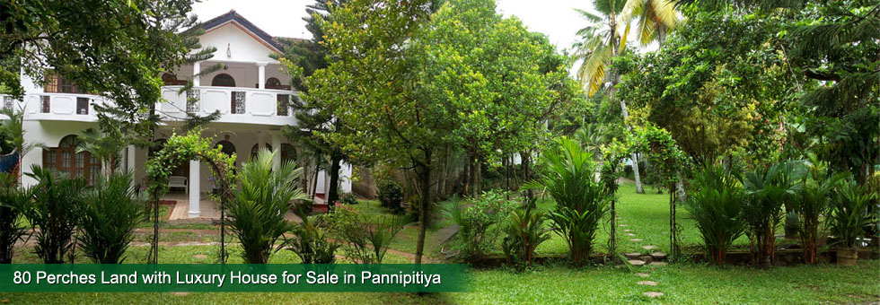 Luxury House for Sale in Pannipitiya, facing road, built on 80 Perches of Land with well maintained Land with well secure right round parapet wall. About 3.5 Km to Kottawa Town and 2 Km to the Entrance Matara – Colombo – Kaduwela Express Way.