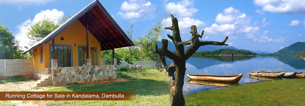 Running Cottage with 1.5 Eco friendly Land for Sale in Kandalama, Dambulla, facing to Sigiriya Main Road.