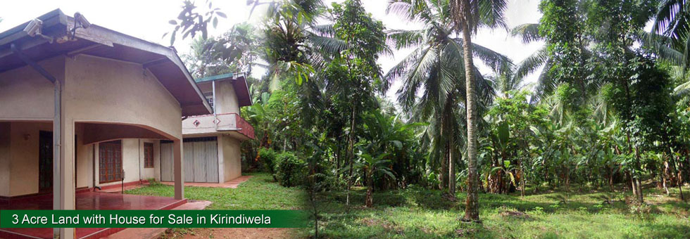 Almost  3 Acre (468 Perches) Land with House for Sale in Mandawala, Kirindiwela , adjoined to Colombo Kirindiwela main road (225 Bus). Less than 1.5 Km to Radawana, 5 Km to Kirindiwela, 13 Km to Delgoda,  1.5 hrs to Colombo,