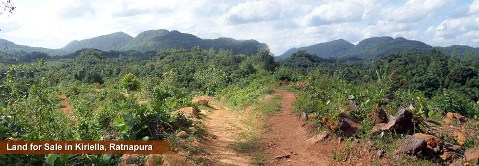 9 Acre Fertile Land for Sale in Kiriella, Ratnapura District, Sabaragamuwa Province. Access Available from Eheliyagoda or Parakaduwa.
