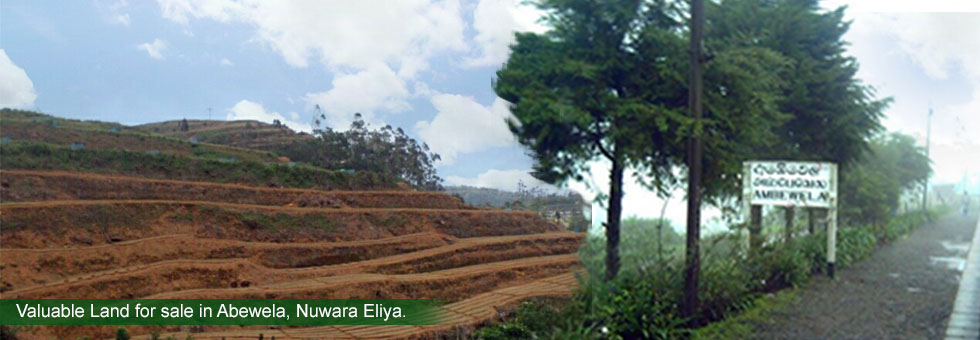 "A Valuable 9 Acres Land for sale in ""Green Vally Estate"", Abewela, Nuwara Eliya with splendid view facing to Tea estates & mountain ranges.  Rare opportunity to ​Touristum, Cultivation. Calm and quite environment with a panoramic view of entire Nuwara Eliya city. Less than 10 Km to Little England."