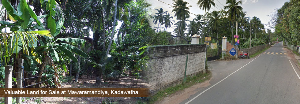 20 Perches Rectangular Shape Valuable Commercial Land for Sale at Mawaramandiya, Kadawatha. Close Proximity to Kadawatha town, Easy access to Kadawatha City Center, Kiribathgoda main cities. Few mints drive to Southern Highway Entrance.