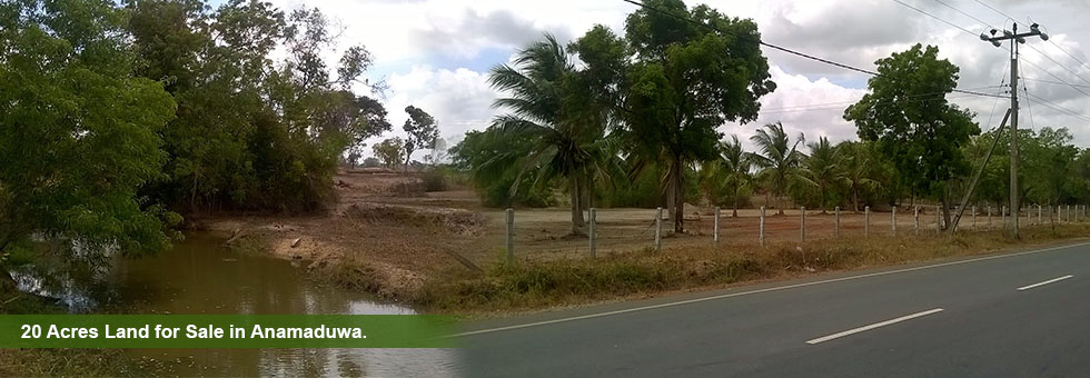 An Ideal Land of 20 Acres for any purpose bordering Chilaw Anamaduwa carpeted road. It's only 8 km from Anamaduwa town. Near by schools. The HI tension line is at the border and the land has electricity. The road front is more than 500 ft. The land has a water fountain and it has water during any drought. Even today it can be seen 1000 Sq.Ft. of water fountain on the surface of 20ft depth.