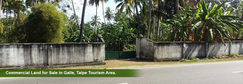 A valuable 53 Perches Commercial Land block for sale Galle – Talpe. Land situated. In front of beach access, situated in land side, Just need to across and walk 25 meters to beach. There are with plenty of luxury villas surrounding this land. Highly tourism area. Just 3 kK to Unawatuna. Immediate sale.