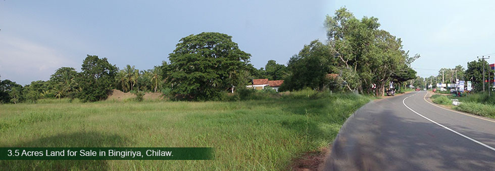 A beautiful Paddy Field facing Land for Sale in Bingiriya, Chilaw situated Bowatta Junction on Kurunegala Chilaw main road. About 3 Km to Bingiriya town and