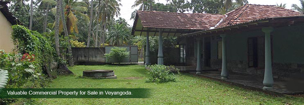 Valuable Commercial Property extend of 41.5 Perches available for Sale Kottala Road, Veyangoda. Road frontage over 80 Sq.Ft and Suitable for both residential and commercial purposes