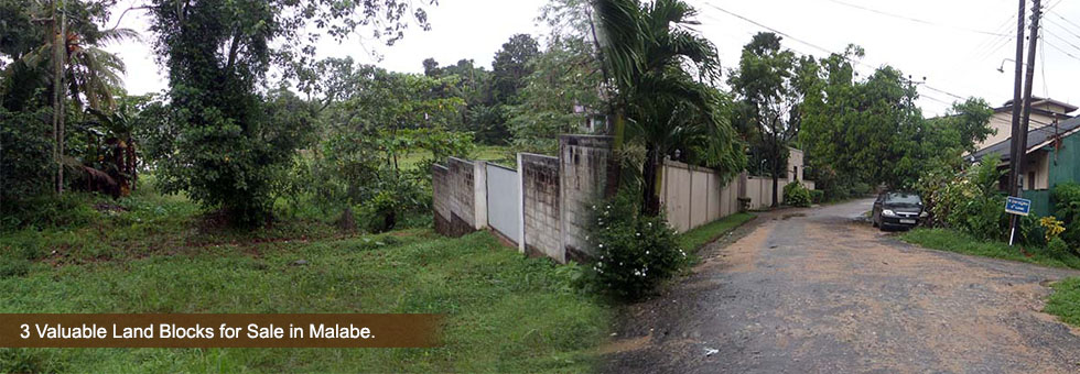 3 blocks of land in Malabe ( Each 10 perches) Water, Electricity facilities. Facing a beautiful paddy field and can see the highway. Clear deeds, 18 feet wide roads. Surrounded by a respectful neighbors (Crickerters, Engineers, Famous Teachers). Few minutes to the Kaduwela highway entrance and to the bus routes.