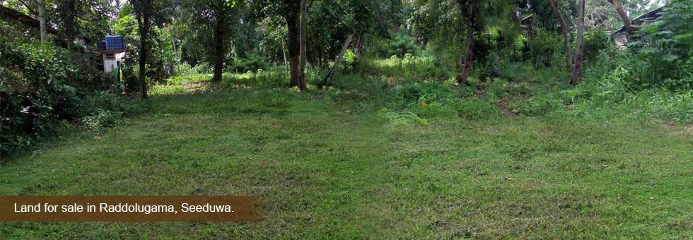 Raddolugama Land Cover