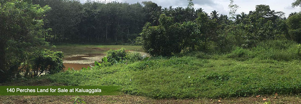 Bare land in a calm and quiet area at Kahatapitiya.  Ideal for a business or agricultural purpose  bordering water front.